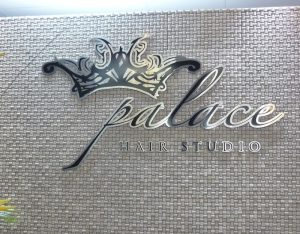 palace hair stainless steel