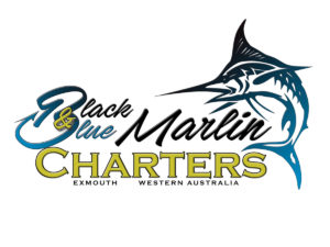BLACK & BLUE CHARTERS